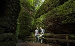 Des randonneurs sur le «Rennsteig», un sentier long de 170 kilomètres au coeur de la forêt de Thuringe.