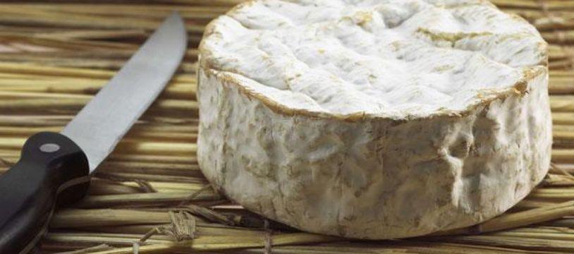 Un camembert de Normandie