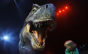 Une petite fille est effrayée par une réplique à échelle 1:1 d'un Tyrannosaure Rex exposée à l'O2 Arena de Londres, le 18 mars 2009.