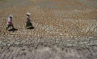 Des fermiers thaïlandais dans leur champ asséché à Bang Pla Ma, le 2 juillet 2015