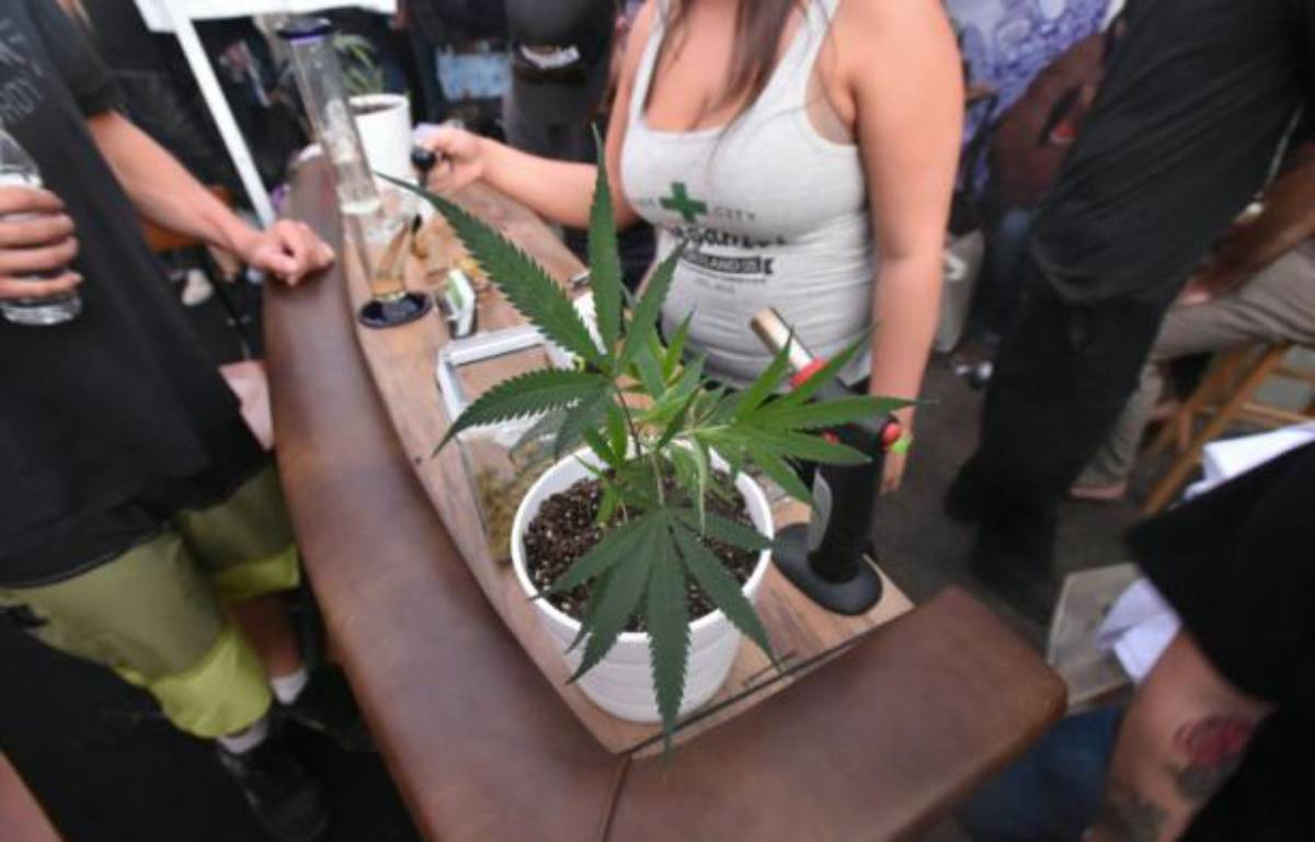 """La première """"dope cup"""", une compétition annuelle de cannabis, à Portland, dans l'Oregon le 4 octobre 2015 – Josh Edelson AFP"""