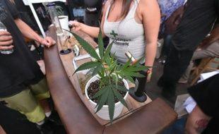 """La première """"dope cup"""", une compétition annuelle de cannabis, à Portland, dans l'Oregon le 4 octobre 2015"""