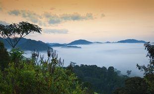 Ses parcs naturels font du Rwanda une destination de choix pour l'écotourisme.