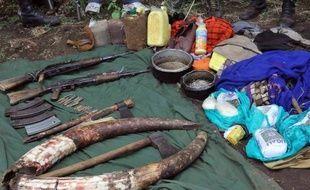 Derrière les braconniers d'ivoire, les pollutions sauvages, les pêcheurs illégaux ou les escroqueries aux quotas-carbone, il y a souvent de puissantes mafias internationales, assurent policiers et experts.