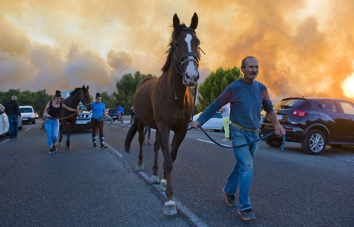 L'évacuation des Pennes-Mirabeau, le 11 août 2016. – LILIAN AUFFRET/sipa