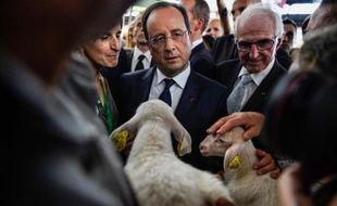 François Hollande a tenté de rassurer mercredi des éleveurs inquiets, parfois véhéments, et s'est engagé à leur donner la priorité dans la future politique agricole commune (2014-2020).