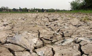 Illustration de la sécheresse.