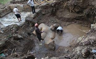 Des restes de statues présentées comme celles de pharaons de la XIXe dynastie (XIIIe siècle avant J.-C.) ont été découverts dans une fosse à proximité du temple de Ramsès II, dans la banlieue du Caire, a annoncé le 9 mars 2017 le ministère égyptien des Antiquités.