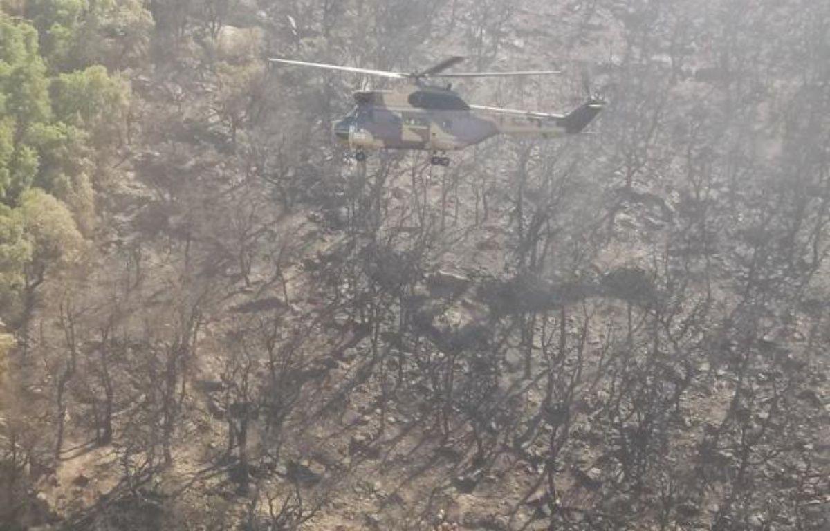 Le détachement d'intervention héliporté de l'armée française sur le versant espagnol des Pyrénées les 23 et 24 juillet dernier. – SIRPA TERRE IMAGE LYON