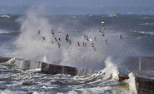 La tempête Carmen frappe Prefailles, dans l'ouest de la France, lundi 1er janvier.