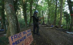 Depuis leur intervention pour expulser les occupants de la ZAD de Kolbsheim, les gendarmes mobiles encadrent la forêt où le déboisement a commencé ce mercredi.