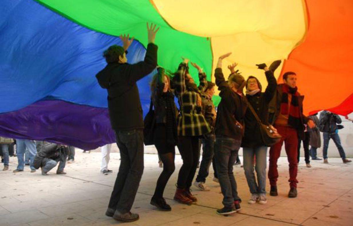 Manifestation en faveur du mariage pour tous à Bordeaux, le 8 décembre 2012. – PASTOR/SIPA