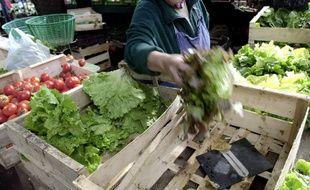 Un maraîcher choisi une salade de culture biologique sur un étal du marché des fossés Saint Julien à Caen. (Photo illustration).