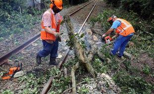 Des cheminots dégagent des branches tombées sur une voie après des orages près de Pauillac le 27 juillet 2013