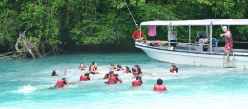 """Des touristes chinois apprécient l'eau turquoise de """"Milky Way"""", célèbre lagon des Palaos dans les îles de Micronésie, le 6 mars 2015"""