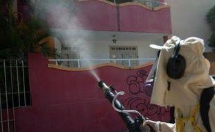 Fumigation contre le moustique Aedes Aegypti, vecteur du virus Zika, le 29 janvier 2016 à Bahia, au Brésil