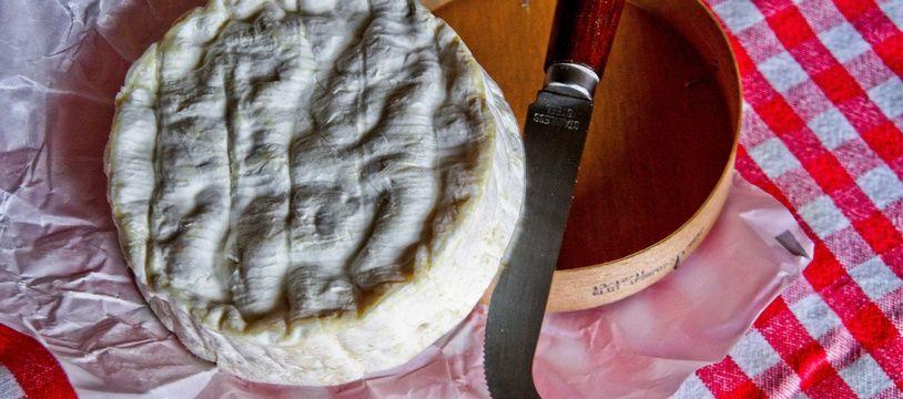 Illustration d'un camembert