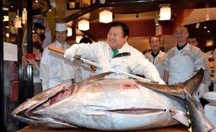 Le Japon envisage de diviser par deux ses prises de jeunes thons rouges dans le Pacifique Nord à partir de 2015 par rapport au volume de pêche de 2002-2004, ont rapporté dimanche des médias nippons.