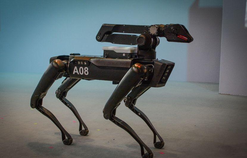Hawaï : Ce chien-robot de la police contrôle la température des SDF atteints  du Covid-19