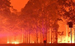 Un pompier passe devant des arbres en feu dans la ville de Nowra, le 31 décembre 2019.