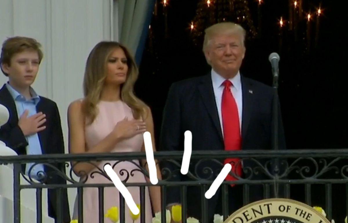 La main droite de Donald Trump n'est pas où elle devrait être, Melania fronce les sourcils et le fait rentrer dans le rang. – Capture d'écran Youtube