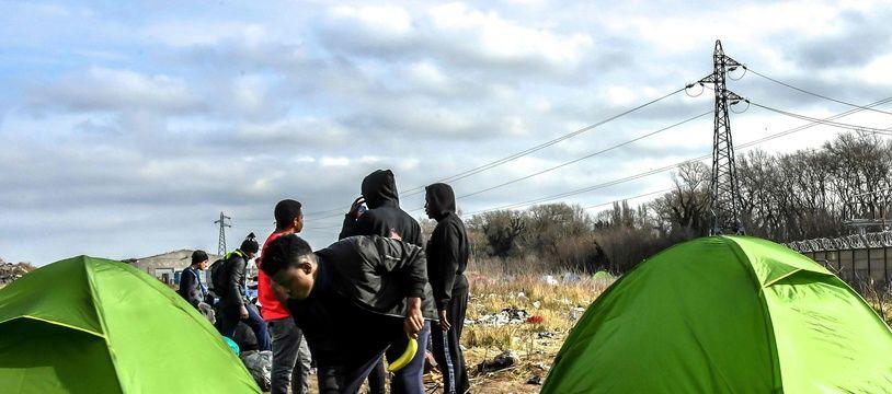 Des migrants ont reconstitué une petite jungle à Calais (image d'illustration)