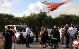 Une quarantaine d'hectares de maquis ont été détruits vendredi aux portes d'Ajaccio par un incendie attisé par un vent violent qui a menacé des habitations, un vignoble et la centrale thermique de la ville.