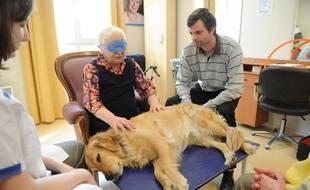 Séance de zoothérapie à la maison de retraite Korian Magenta, dans le 10e arrondissement de Paris, le 8 avril 2011.