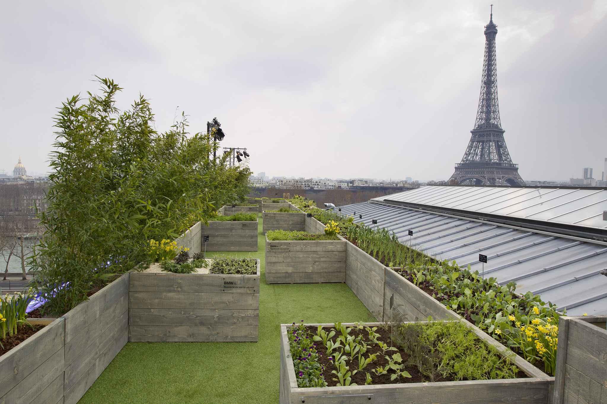 Paris une lue ump propose de classer les toits de la capitale au patrimoine de l 39 unesco - Jardin sur les toits ...