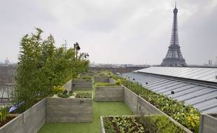 Paris le 03 avril 2013. Installation par Alain Passard le chef legumier de l'Arpege d'un jardin potager de 150m2 sur les toits du palais de Tokyo a quelques pas de la Tour Eiffel. espaces verts. Operation BMW a l'occasion de la presentation des nouvelles voitures electriques BMW i.