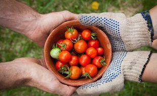 Le site toulousain  «Plantez chez nous» met en relation des propriétaires de terrains et des jardiniers prêts à les cultiver