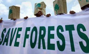 Des manifestants protestent contre la déforestation en Indonésie, le 22février 2010.