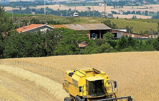 Plus de 60 000 tonnes de pesticides sont utilisés par an en France.
