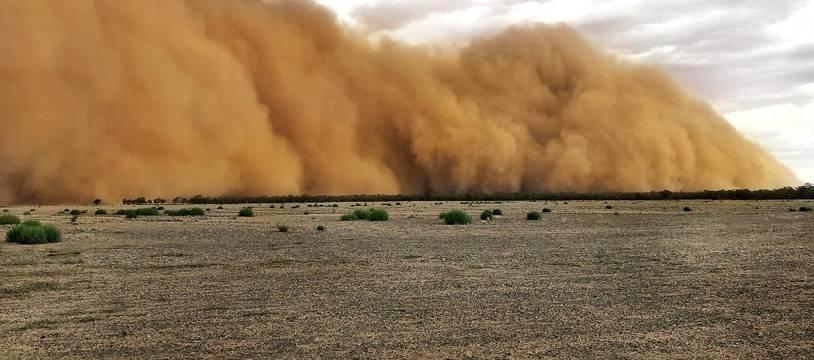 Des tempêtes de poussière et des averses de grêles se sont abattues dimanche 19 et lundi 20 janvier 2020 dans différentes régions de l'est de l'Australie.