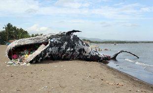 Pour sensibiliser à la pollution des océans au plastique, Greenpeace a mis en place une sculture de baleine morte aux Philippines.