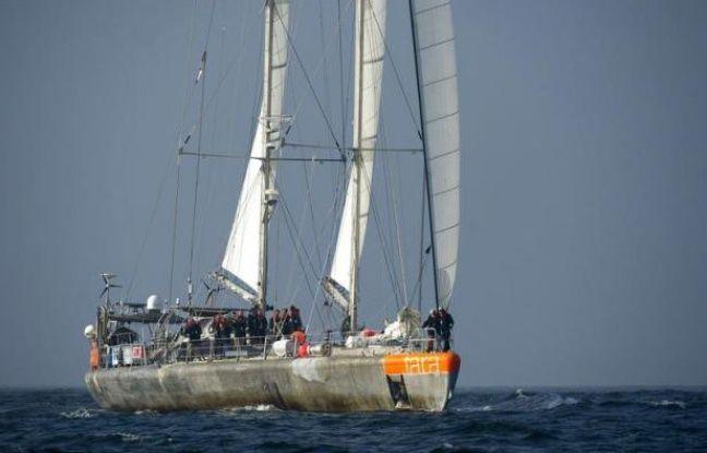 Toutes voiles dehors, la goélette Tara tire ses derniers bords dans le Golfe de Gascogne avant son retour samedi à Lorient, son port d'attache, et la fin de l'expédition Tara-Océans, consacrée pendant deux ans et demi à la première étude planétaire intégrée du plancton.
