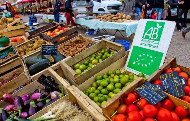 Nouvelle-Aquitaine: Un fonds de garantie pour aider 3.000 agriculteurs dans leur transition écologique
