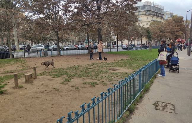 Un parc canin dans le 17e arrondissement de Paris.