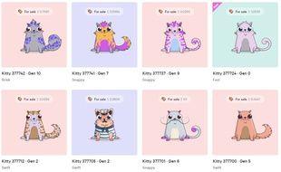 Certains de ces chats virtuels se sont vendus plus de 100.000 dollars.