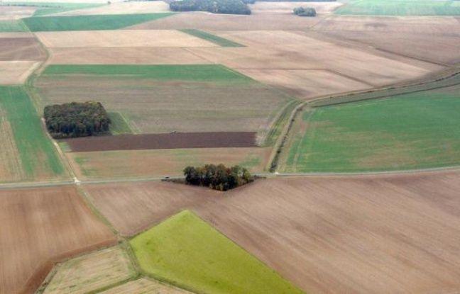 """Les prix du foncier rural en France ont grimpé en 2011, notamment ceux des terres agricoles libres (+6,0%) et des forêts (+10,8%), perçues comme des """"valeurs refuges"""", a indiqué mercredi la Fédération nationale des Sociétés d'aménagement foncier et d'établissement rural"""