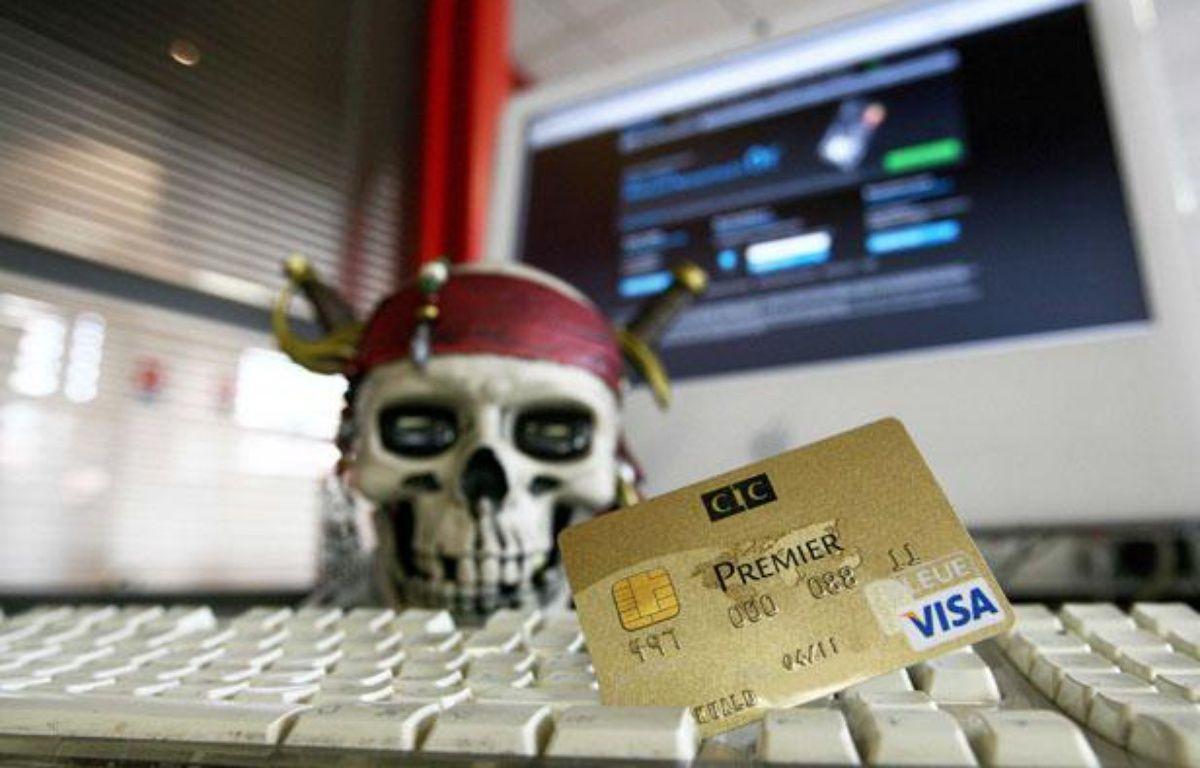 Illustration du piratage des cartes bleue Visa et autres sur internet. – MEIGNEUX/SIPA