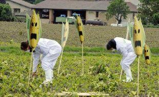 Des militants anti-OGM arrachent des plants de maïs transgénique, dans le département français de la Haute-Garonne, le 2 mai 2014