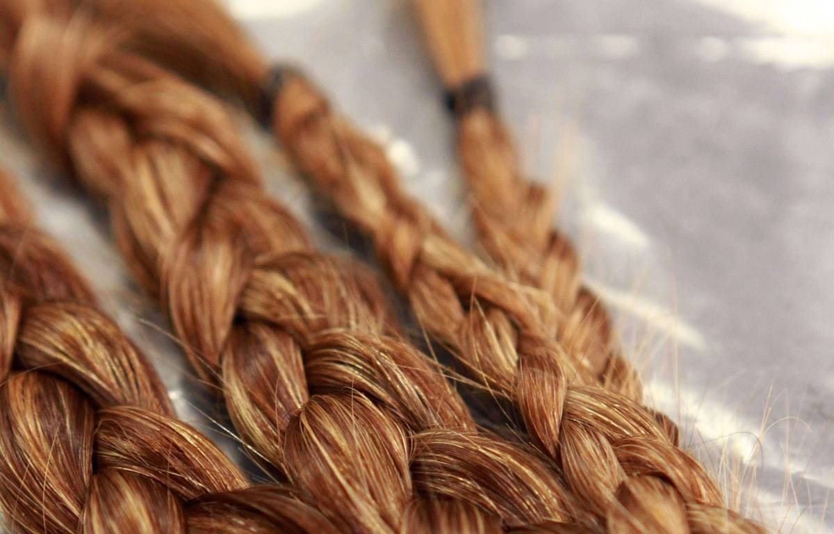 Illustration: des cheveux roux. – Kelly Lafferty/AP/SIPA