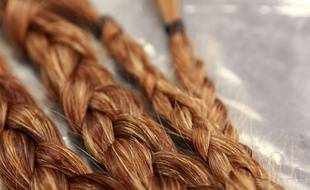 Illustration: des cheveux roux.