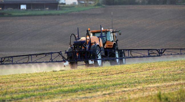 La baisse des distances de pulvérisation des pesticides irrite des députés
