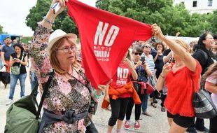 La manifestation anti-corrida de la Feria de la Pentecôte à Nîmes, le 19 mai 2018.