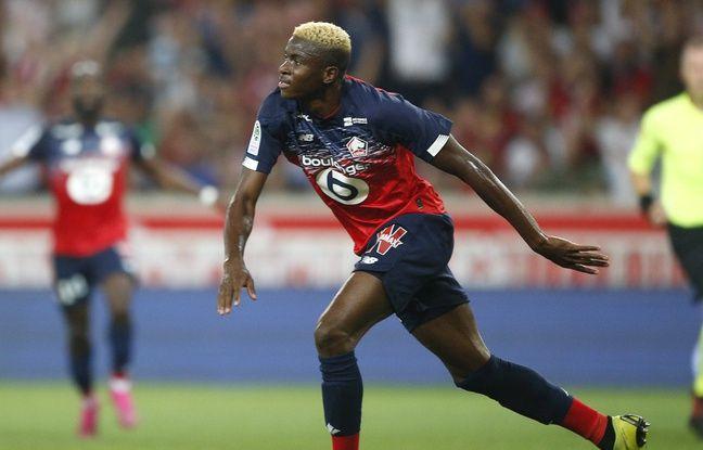 Losc: Comment Victor Osimhen est devenu la nouvelle star de la Ligue 1
