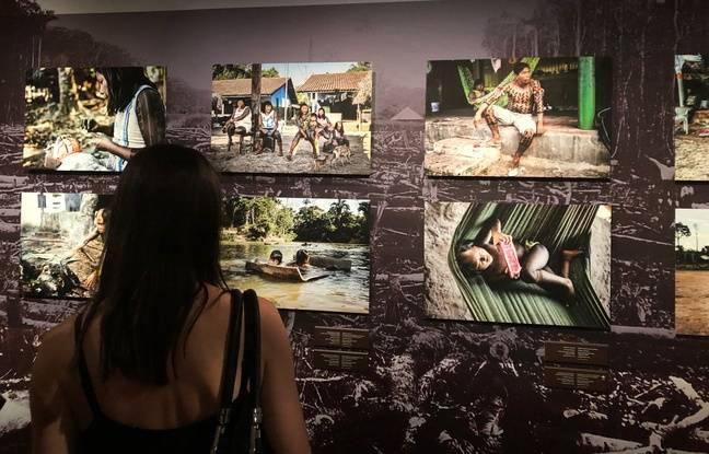 Exposition «Amazonie, le chamane et la pensée de la forêt» au château de Nantes