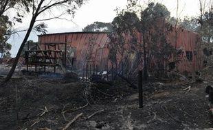 Vue générale de zones boisées ravagées par des incendies à l'est d'Adelaïde (Australie), le 3 janvier 2015