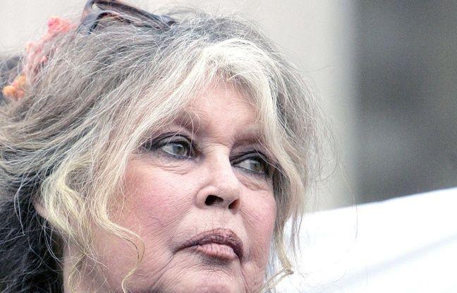 La Réunion: Bardot présente des excuses et redit sa révolte